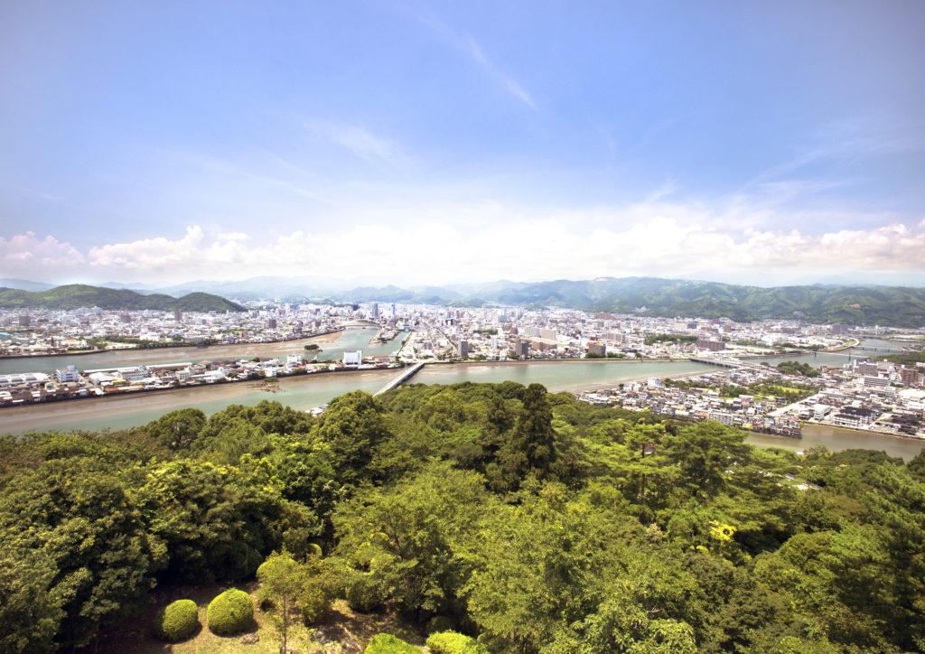 高知県は全国有数の生姜生産地